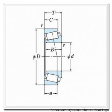 T1011fs-T1011s screwdown systems thrust Bearings